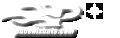 Click to Open Phoenix Bats Store