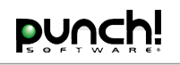 Click to Open Punch Software Store