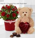 FTD: Valentine's Day Best Sellers