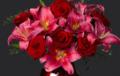 Flora2000: Amorous Anniversaries