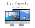 EduCorporateBridge: Live Projects & Internships