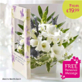 Flowercard: Sympathy Flowercards From £17.99