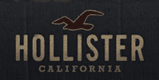 Click to Open Hollister Store