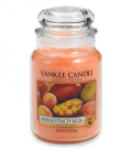 Bed Bath & Beyond: 25% Off Mango Peach Salsa Scented Yankee Candle