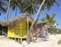 Apple Vacations: Enjoy Your Trip To Punta Cana