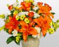 Flora2000: Autumn Specials