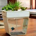 EcoMothering: AquaFarm, $60