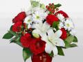 Flora2000: Special Sales CHRISTMAS - DEC 25TH