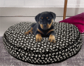 Gettington Credit Application: 50% Off Pamper Your Pooch  Featuring Beds, Houses And More